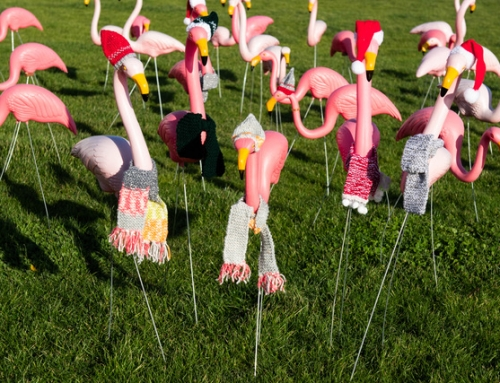 Have a Festive, Fun and Flamingoed time with Bexhill Lions Club