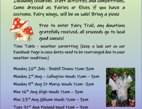 Green Fairies to Visit Bexhill woods